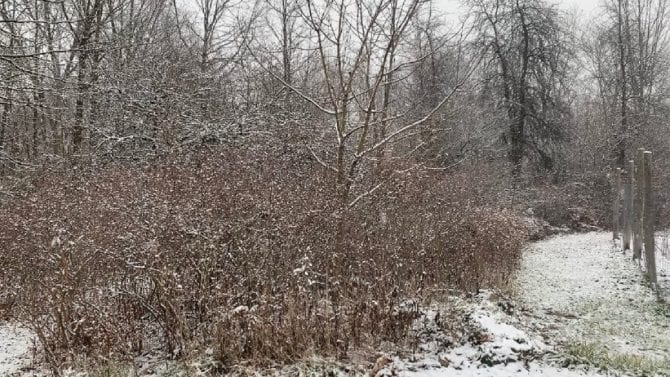 Two-minute Relaxing Snow Fall Meditation